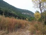 蟠龙山公园2