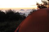 早晨起来的风景