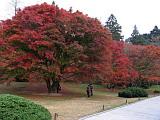 庐山植物园