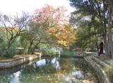 红枫湖花溪