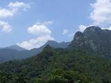 石门台自然保护区