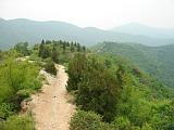 最终还是选择了小路,可以沿着山脊一直走到水库