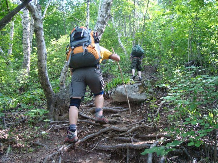 后山铺-云蒙山-云蒙峡重装2日穿越GPS轨迹攻略不行了,现做了个登山杖