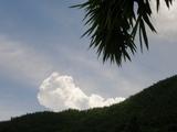 美丽有型的云朵