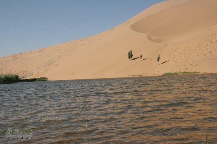 巴丹吉林沙漠探险游巴丹湖