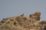 曼德拉山上的石头