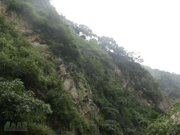 川藏南线骑行第2天nEO_IMG_IMG_3476