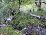 横跨在路上的引水管