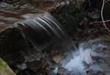 清澈的柴河水源头