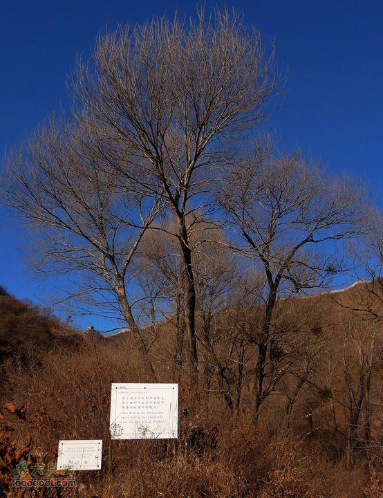 箭扣一日:赵氏山居-西大墙-北京结-鹰飞倒仰-箭扣-正北楼留下与带走