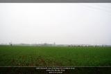 nEO_IMG_DSC06949_framed_12898296