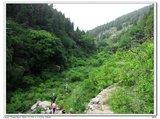 藏龙涧下游的山谷