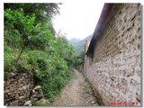 村内的道路
