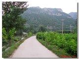 靠近主公路是下岸青村