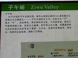 2012.1.4新丰渭河 186_副本