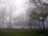 四方顶子的迷雾