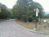 植物园接口2