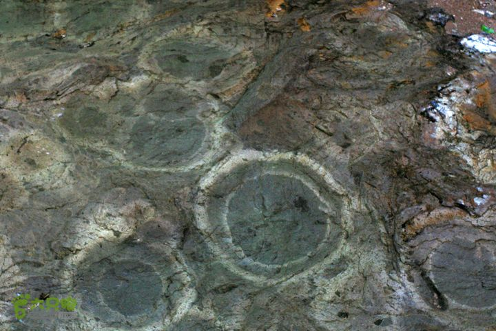 2012年仙居-官坑-神仙居IMG_6635