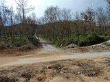 十七队---新路到此结束, 接上水泥路了。