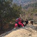 第一峰:翠岩峰,上山时遇到查票的,蒙混过关,上山有一点难度。