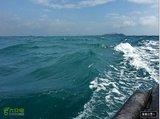 2014-01-11 那天的海浪, 东岛至西岛。