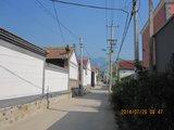 920路上板泉车站东侧向北街道,一直向北出村可到X020进山口