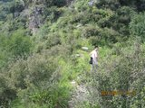 九口鞍垭口【青峰岭垭口】,南侧下山沟、西南上山脊小路明显