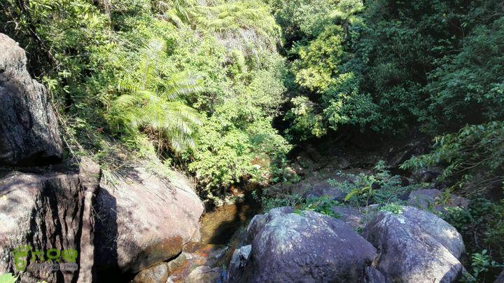 溯溪雁尾坑(左支)中途