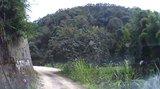 新丰科罗村-东源万绿源林场越野穿越20140629