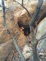 双驼峰西峰的石洞