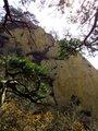 第9峰:老祖峰的岩面