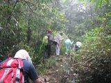 穿越广东唯一的热带雨林