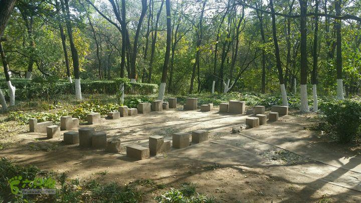 北宫国家森林公园接头人1